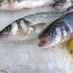 Balığın taze olup olmadıgını nasıl anlarsın ?