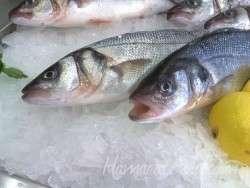 Balığın Taze Olup Olmadığını Nasıl Anlarsın?