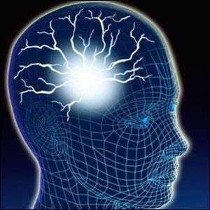 Epilepsi nedir ? Tedavisi ve Tehşisi