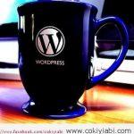WordPress Kategorilere bastığında  Sadece Başlıklar Görünsün