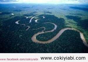 amazon nehri hakkında bilgiler