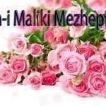 İmam-i Maliki Mezhepi Hakkında herşey