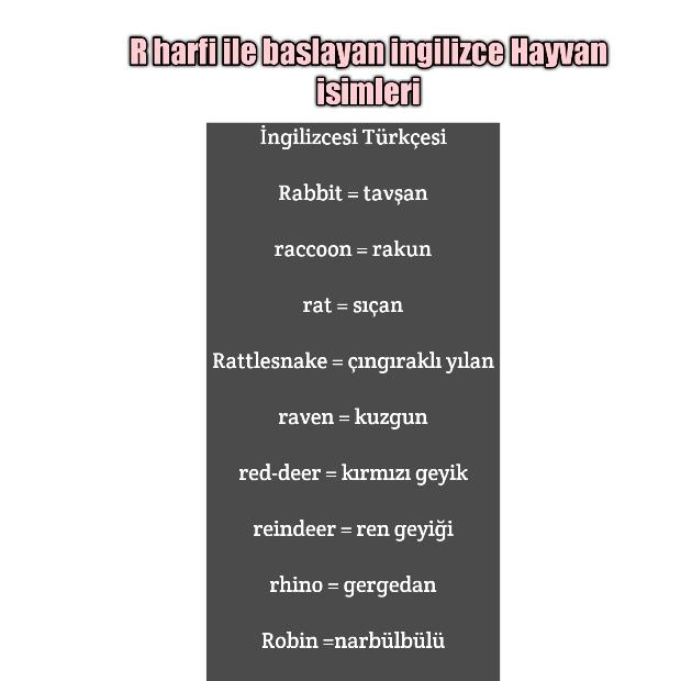 İngilizce hayvan isimleri