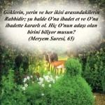 MERYEM Suresi Arapça ve Türkçe Meali
