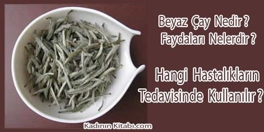 Beyaz Çayın Faydaları ve Hakkında Herşey