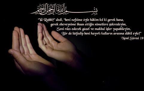 NEML Suresi Arapça ve Türkçe Meali