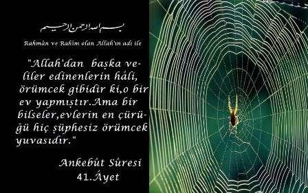 ANKEBÛT Suresi Arapça ve Türkçe Meali