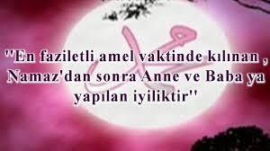 ANNEMM