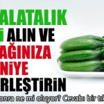 Salatalığın  Bilinmeyen faydaları  ve Herşey