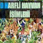 D Harfi ile Başlayan Hayvan İsimleri