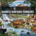 G Harfi ile Başlayan Hayvan İsimleri