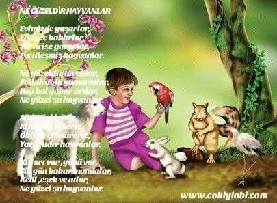 Hayvan Sevgisi Ile Ilgili şiirler Güzel Sözler