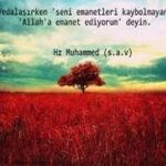 Hz. Ali (ra) den Sözler