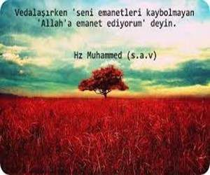 hz-muhammed-s-a-v-hadisler