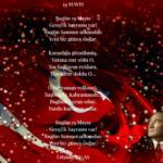 19 Mayıs Şiirleri, 19 Mayıs En Anlamlı Şiirleri