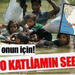 Arakan'daki Katliamın Asıl Sebebi