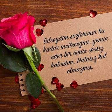 Özür Mesajları -Sevgiliye Özür Mesajları