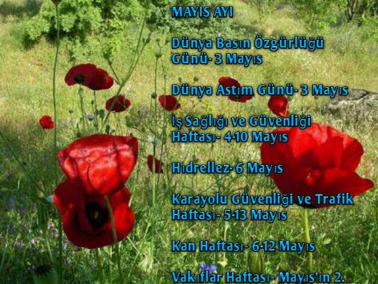 Mayıs Ayı Önemli Günler ve Haftaları