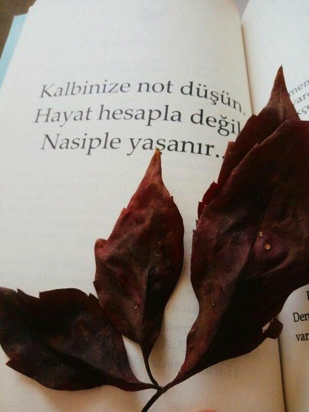 Nasip ile güzel sözler