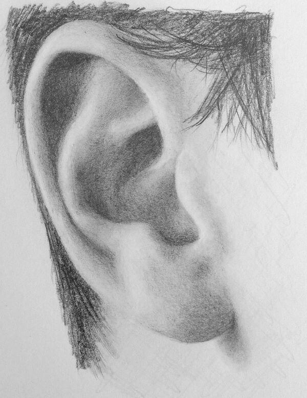 Karakalem Kulak Çizimleri Örnek Çalışmaları