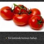 Sebzelerle ilgili Bilmeceler