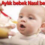 6 Aylık Bebek Nasıl Beslenmeli