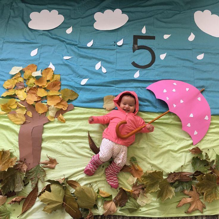 5 Aylık Bebekler ile ilgili Tüm Bilgiler