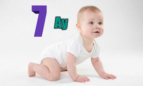 7 Aylık Bebek -Boy-Kilo-Beslenme -Oyun -Gelişim
