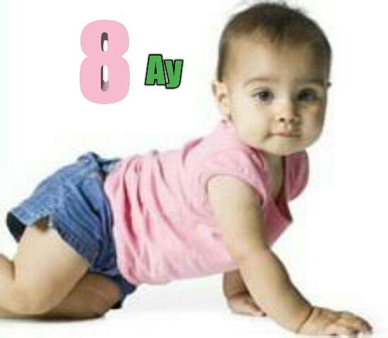 8 Aylık Bebeklerin Gelişimi ile ilgili Bilgiler