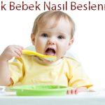 8 Aylık Bebekler Nasıl Beslenmeli