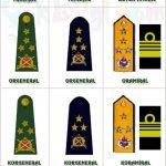 Subay Rütbeleri ve Anlamları