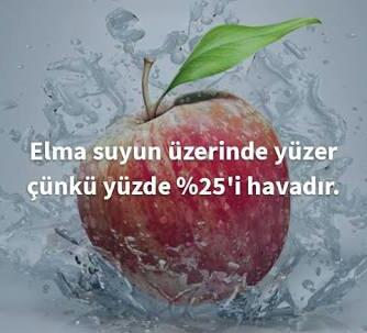 Meyveler Hakkında İlginç Bilgiler