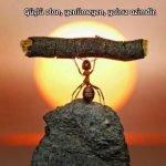 Güçlü olan yenilmeyen yalnız azimdir