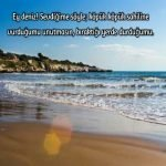 Sahil ile ilgili Sözler