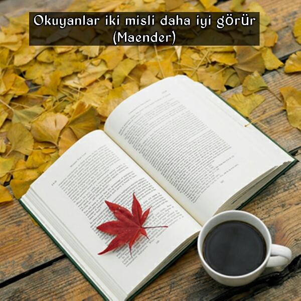 Kitap okumak ile ilgili sözler
