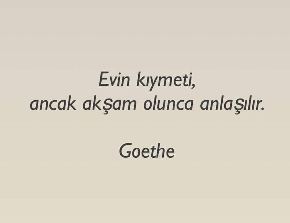 Goethe sözleri