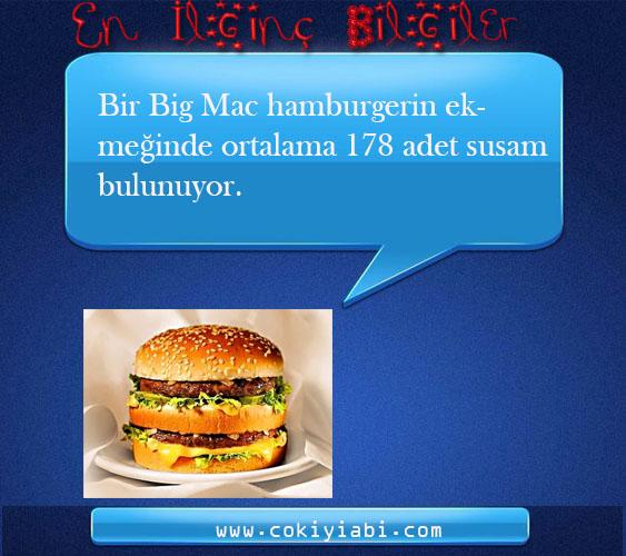 Bir Big Mac hamburgerin ekmeğinde ortalama 178 adet susam bulunuyor.