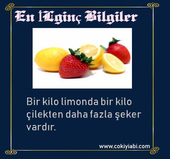 limon hakkında en ilginç bilgiler
