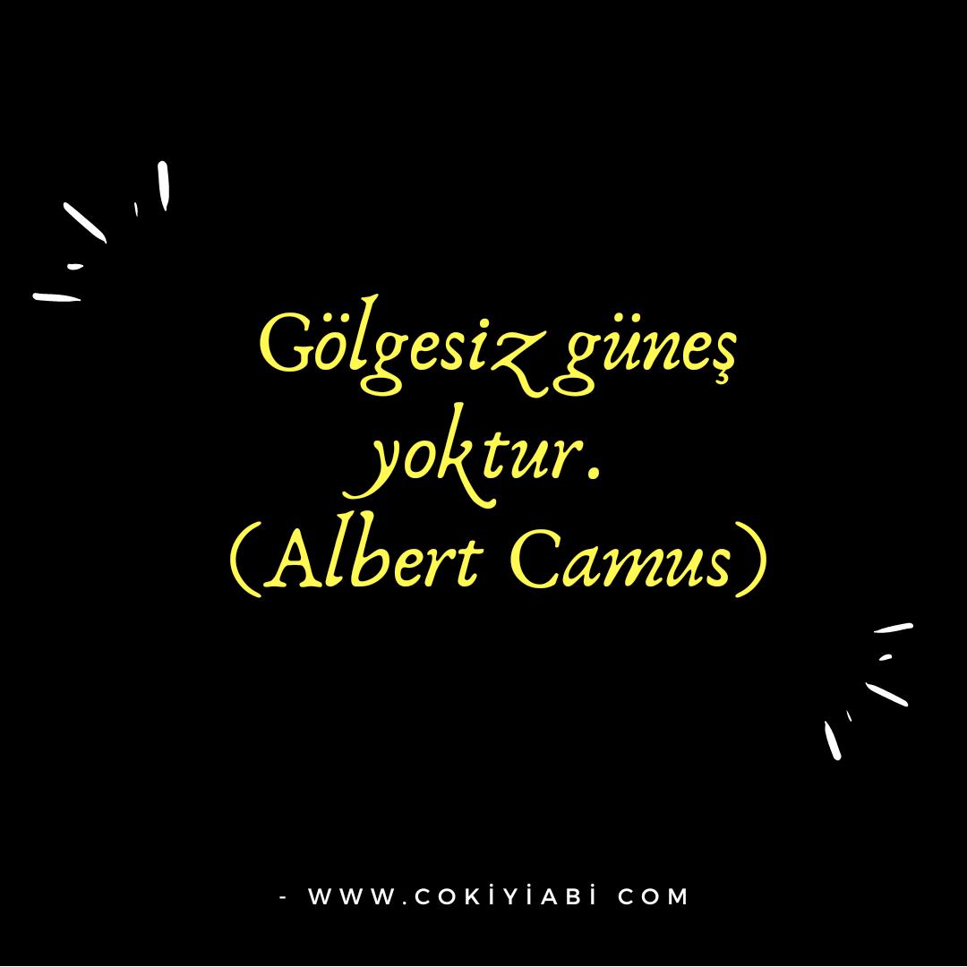Albert cannus sözleri