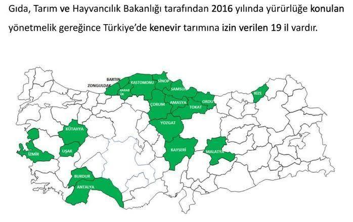 Kenevir üretilen yerler turkiye