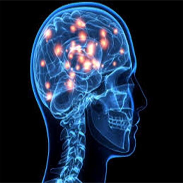 Beyin Hakkında Yeni Bilgiler