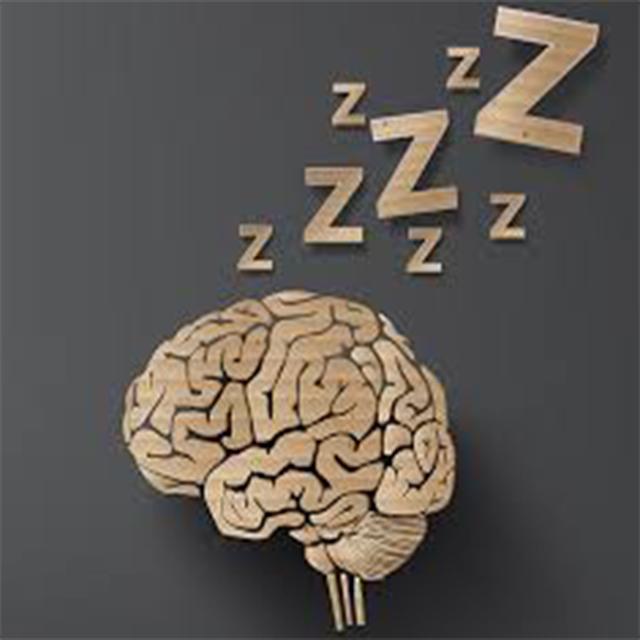Rem Uykusunda Öğrenme Devam Edermi?