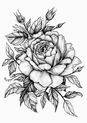 Karakalem Çiçek Çizimleri