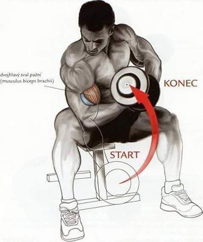 Fitness Yaparken Doğru Hareketler Resimli Anlatım