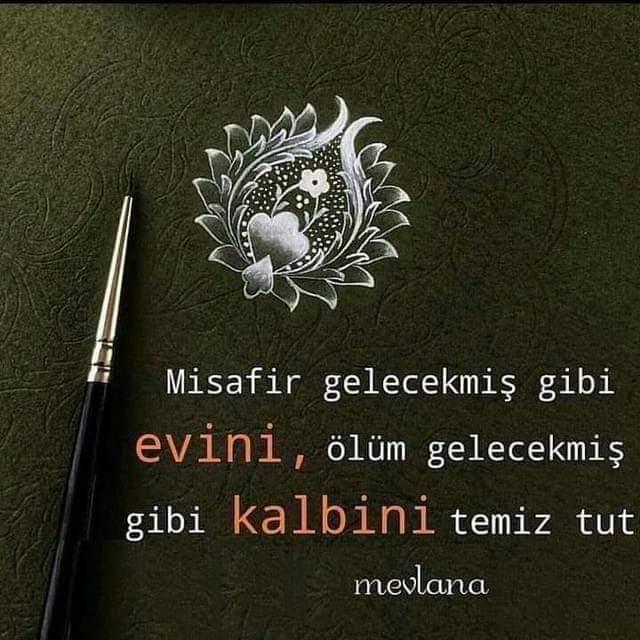 Mevlana sözleri instagram