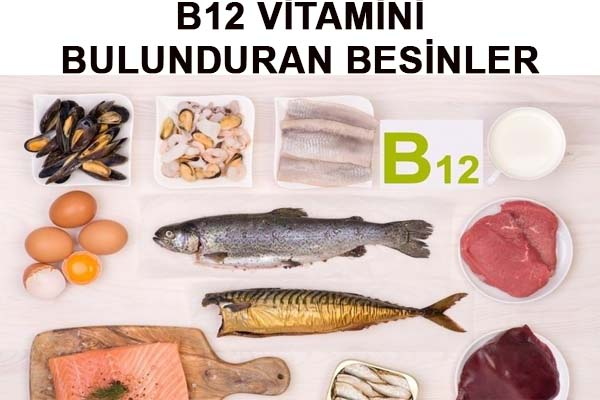 B12 Vitamini Bulunduran Bolca Besinler -B12 Vitamini Eksikliği Nelere Sebeb Olur