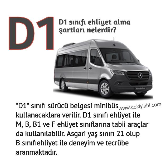 D1 ehliyeti hangi araçları kullanabilir