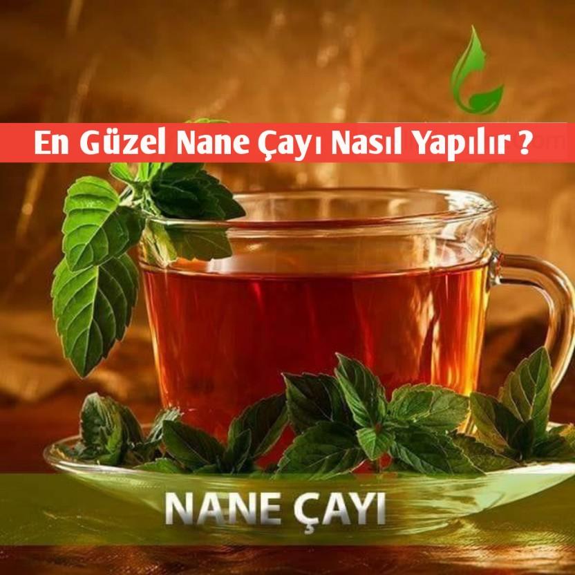 Nane çayı sağlığa faydaları