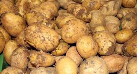 Patatesin Bilinmeyen Kullanım Yolları