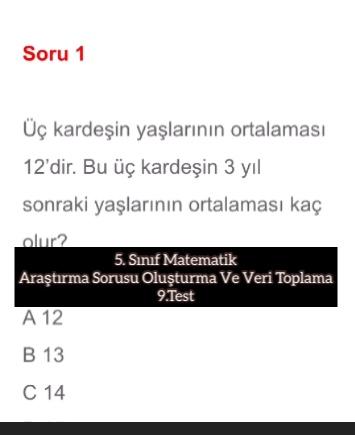 5. Sınıf Matematik Araştırma Sorusu Oluşturma Ve Veri Toplama 9.Test